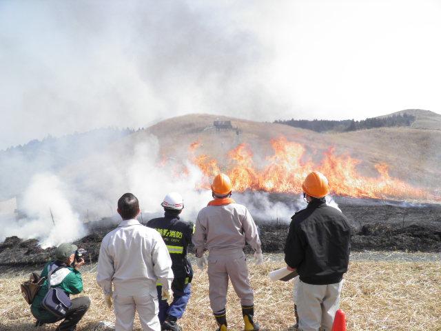 生石高原のすすきの山焼き