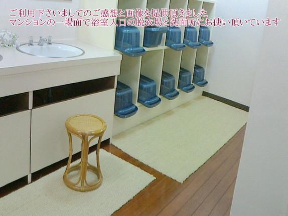 マンションで脱衣場などでお使い頂いているリアルな画像です